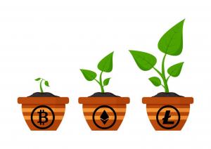 Plant Bitcoin
